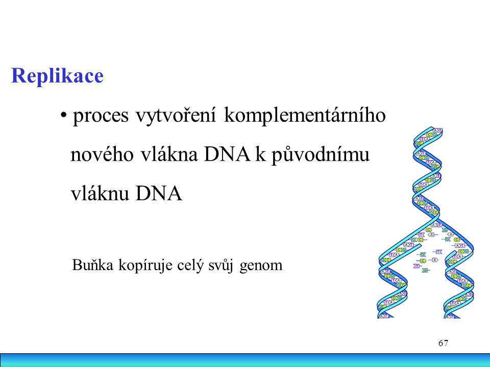 • proces vytvoření komplementárního nového vlákna DNA k původnímu