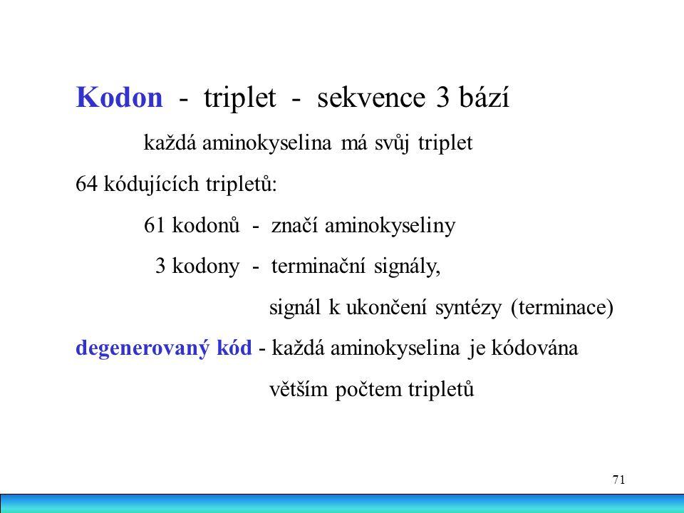 Kodon - triplet - sekvence 3 bází