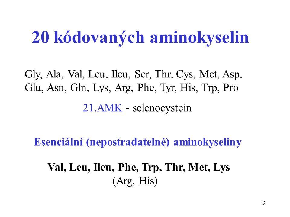 20 kódovaných aminokyselin