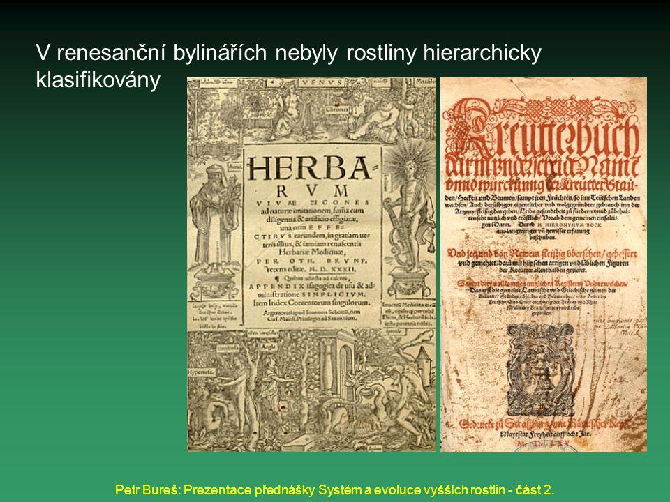 V renesanční bylinářích nebyly rostliny hierarchicky klasifikovány