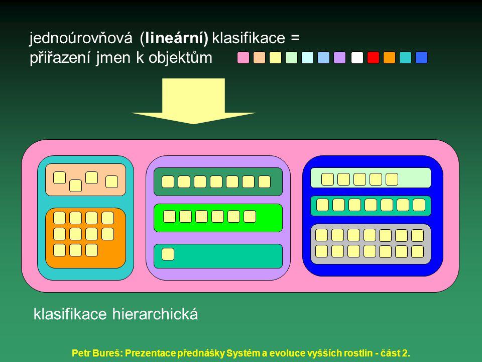 jednoúrovňová (lineární) klasifikace = přiřazení jmen k objektům