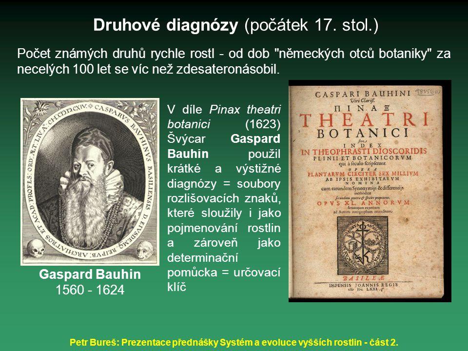 Druhové diagnózy (počátek 17. stol.)