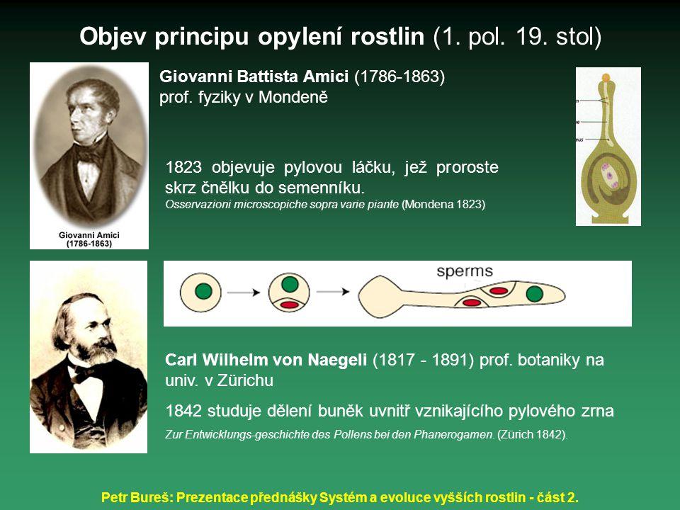 Objev principu opylení rostlin (1. pol. 19. stol)