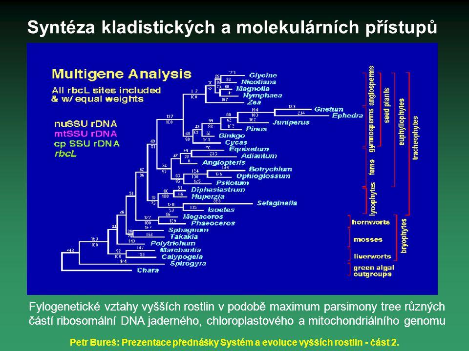 Syntéza kladistických a molekulárních přístupů