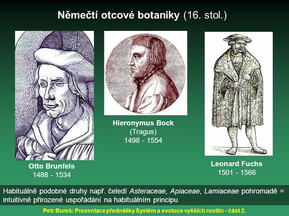 Němečtí otcové botaniky (16. stol.)
