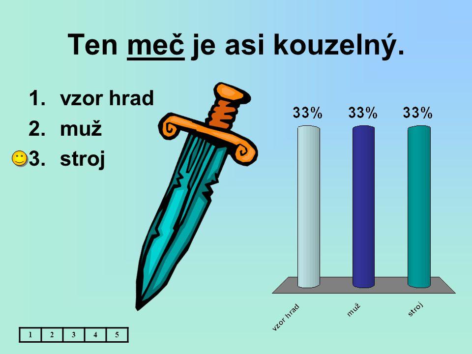 Ten meč je asi kouzelný. vzor hrad muž stroj 1 2 3 4 5