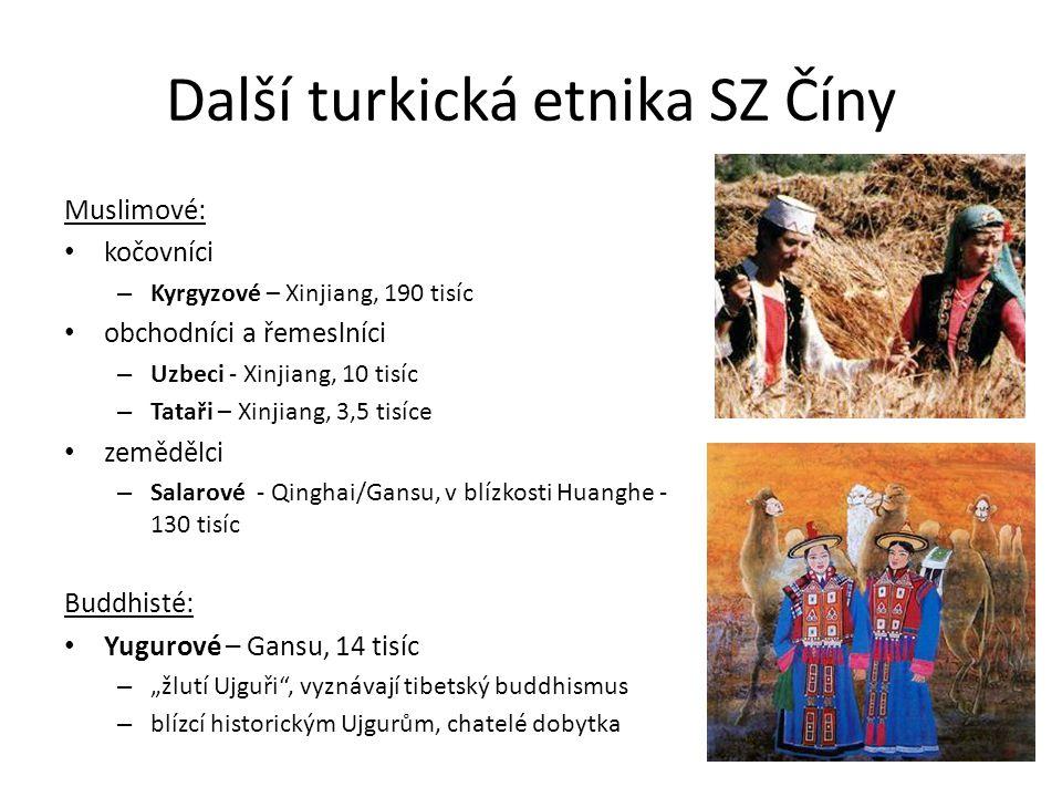 Další turkická etnika SZ Číny