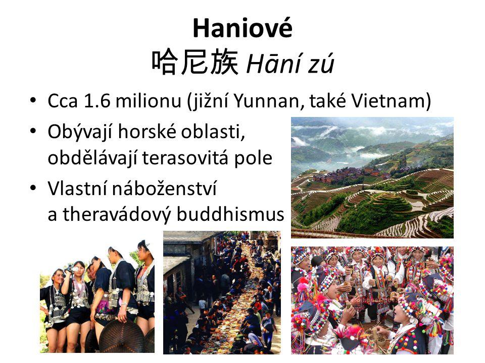 Haniové 哈尼族 Hāní zú Cca 1.6 milionu (jižní Yunnan, také Vietnam)