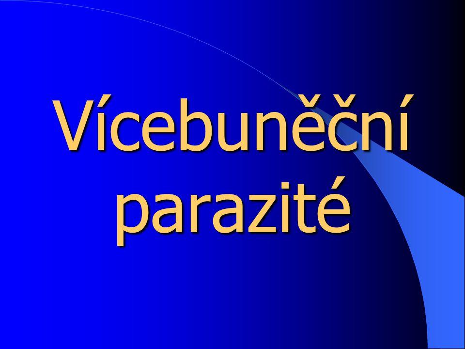 Vícebuněční parazité