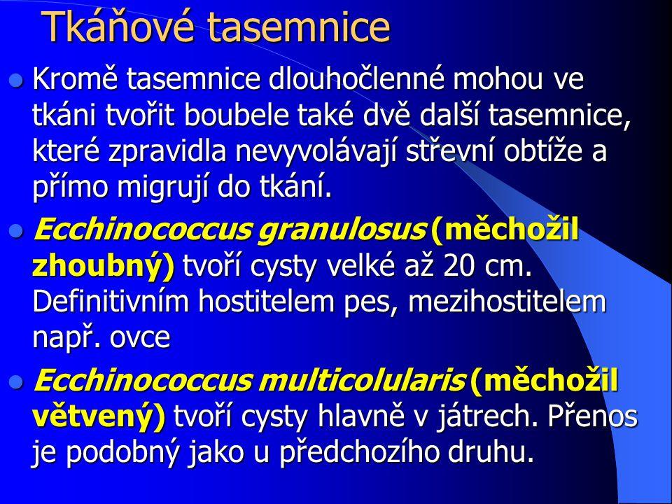 Tkáňové tasemnice