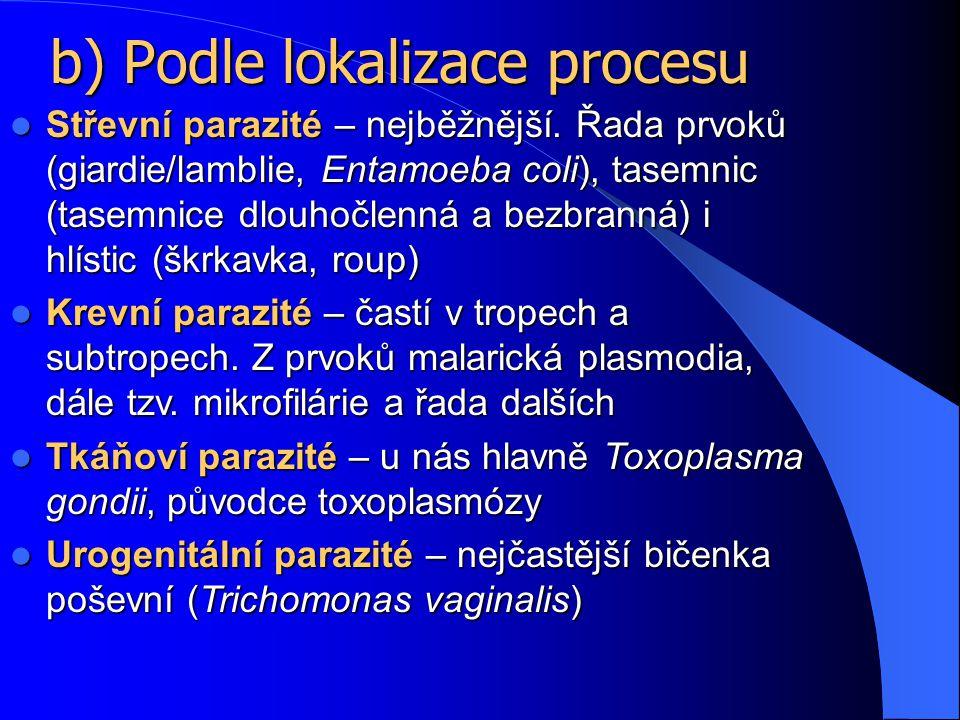 b) Podle lokalizace procesu