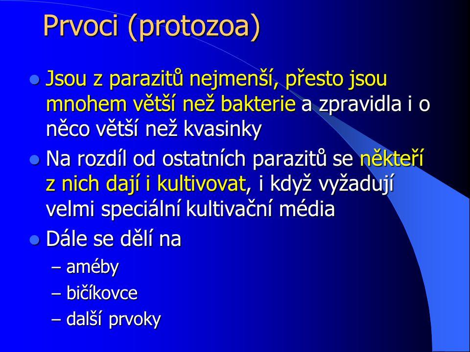 Prvoci (protozoa) Jsou z parazitů nejmenší, přesto jsou mnohem větší než bakterie a zpravidla i o něco větší než kvasinky.