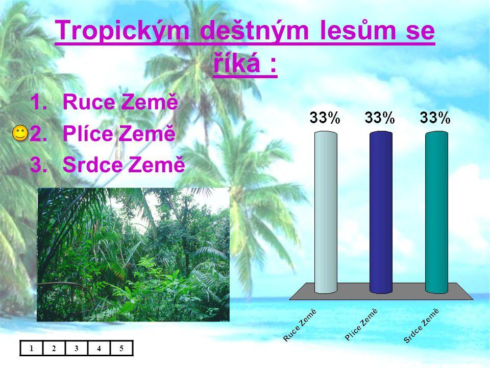 Tropickým deštným lesům se říká :
