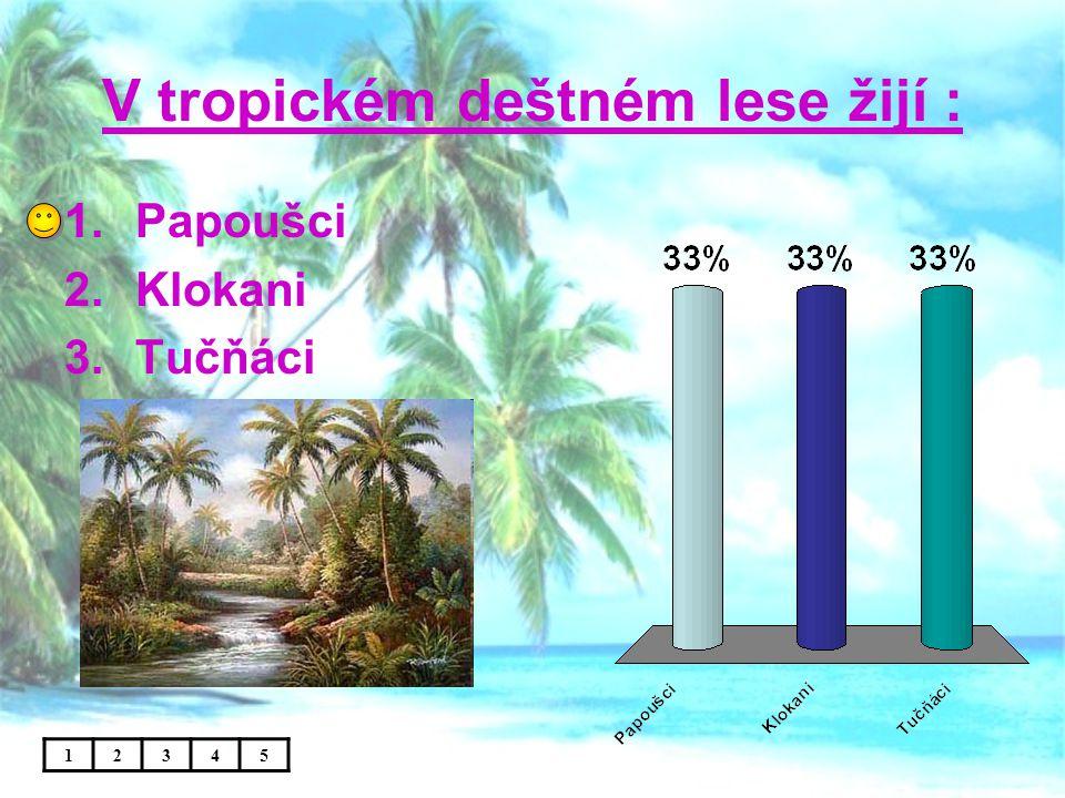 V tropickém deštném lese žijí :