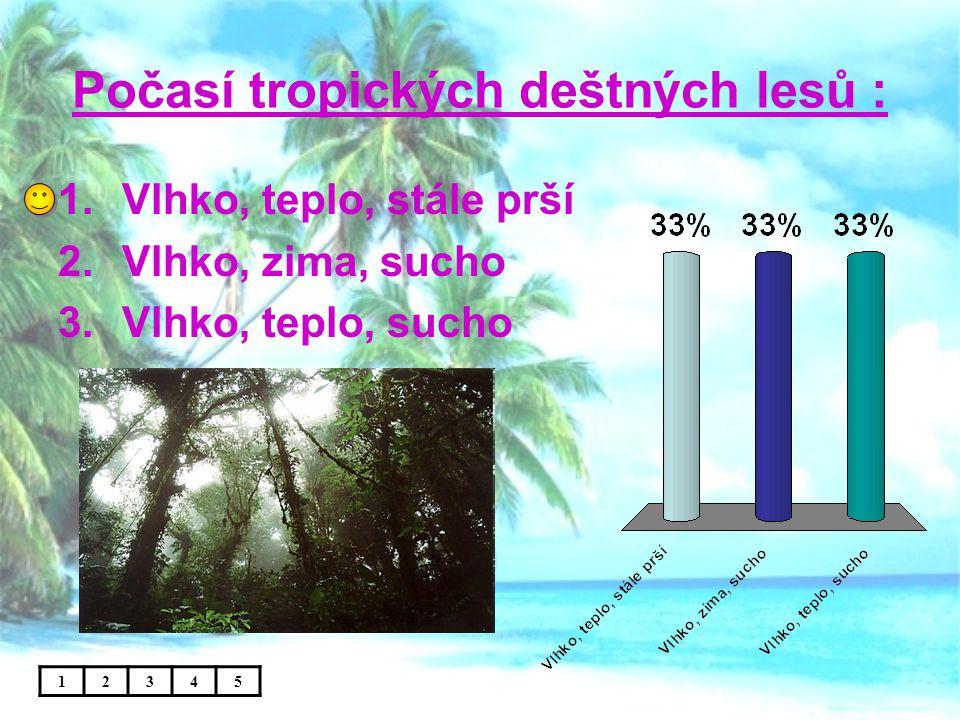 Počasí tropických deštných lesů :