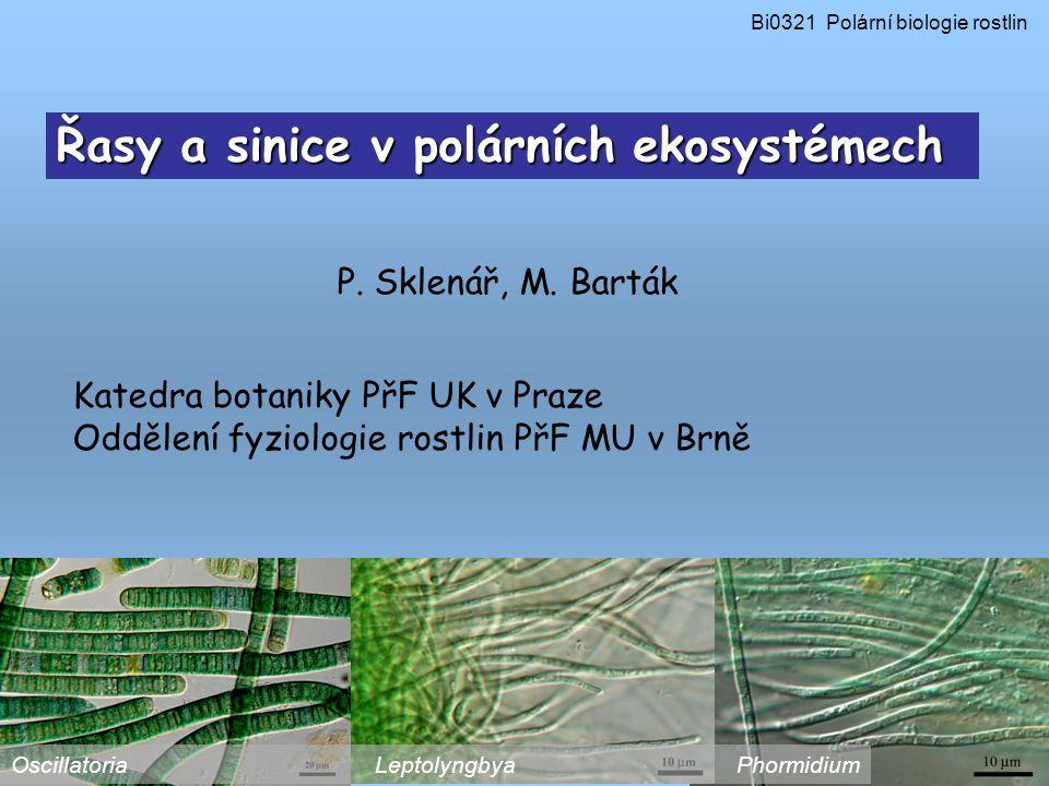 Řasy a sinice v polárních ekosystémech