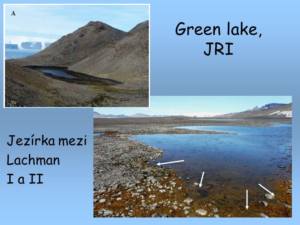 Green lake, JRI Jezírka mezi Lachman I a II