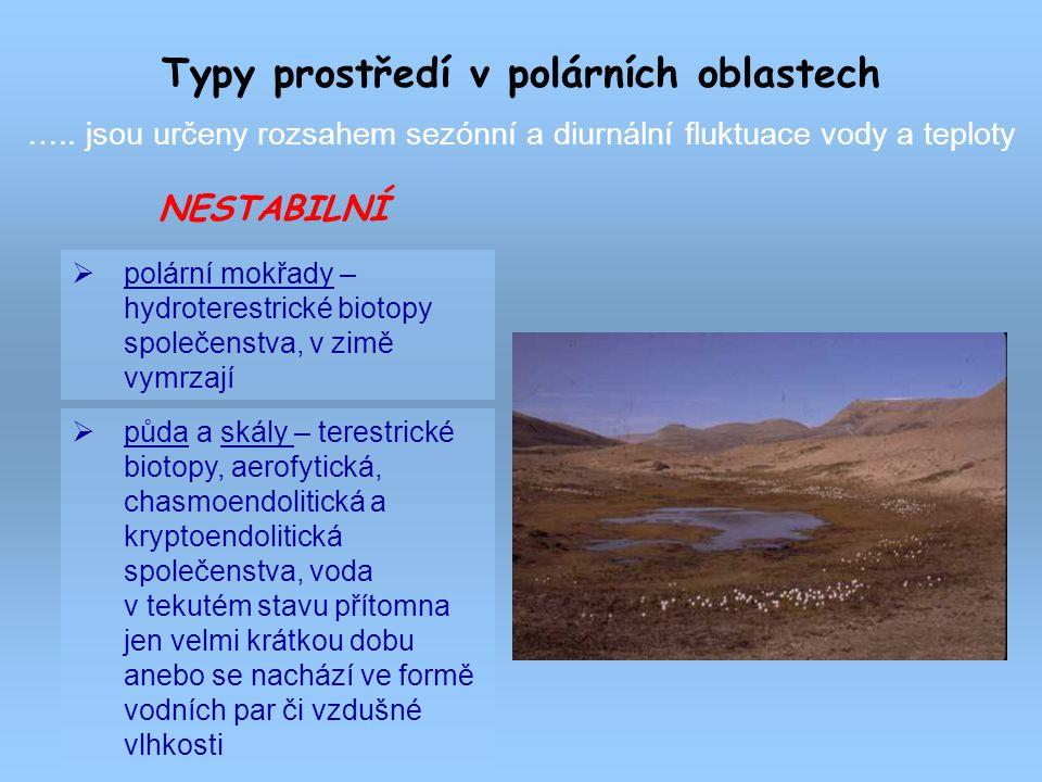 Typy prostředí v polárních oblastech