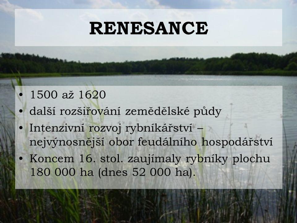 RENESANCE 1500 až 1620 další rozšiřování zemědělské půdy