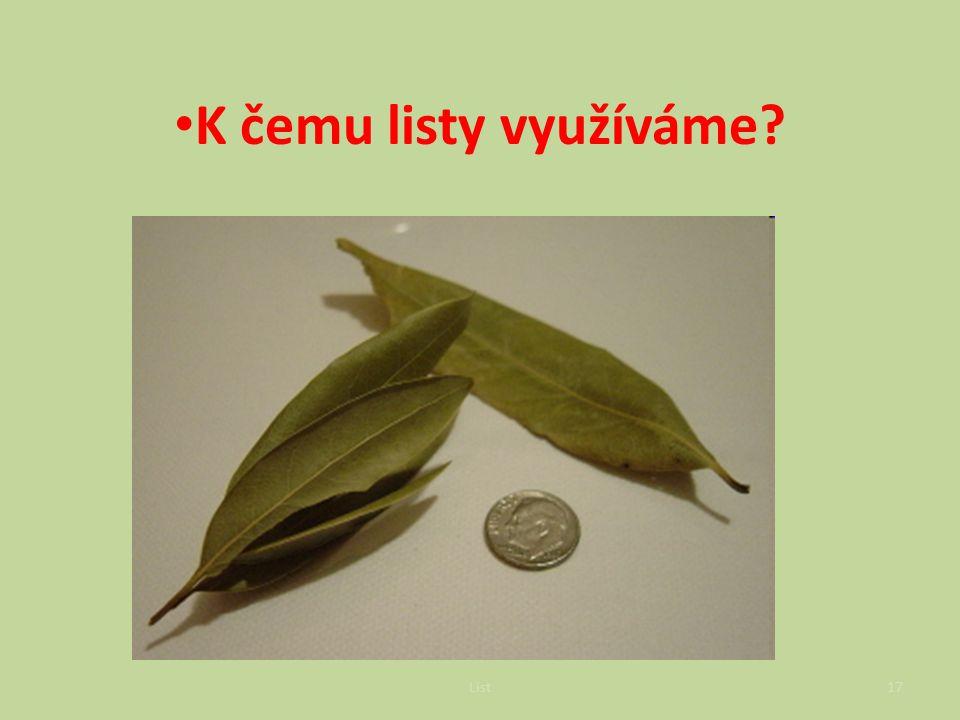 K čemu listy využíváme koření: bobkový list = vavřín, majoránka List