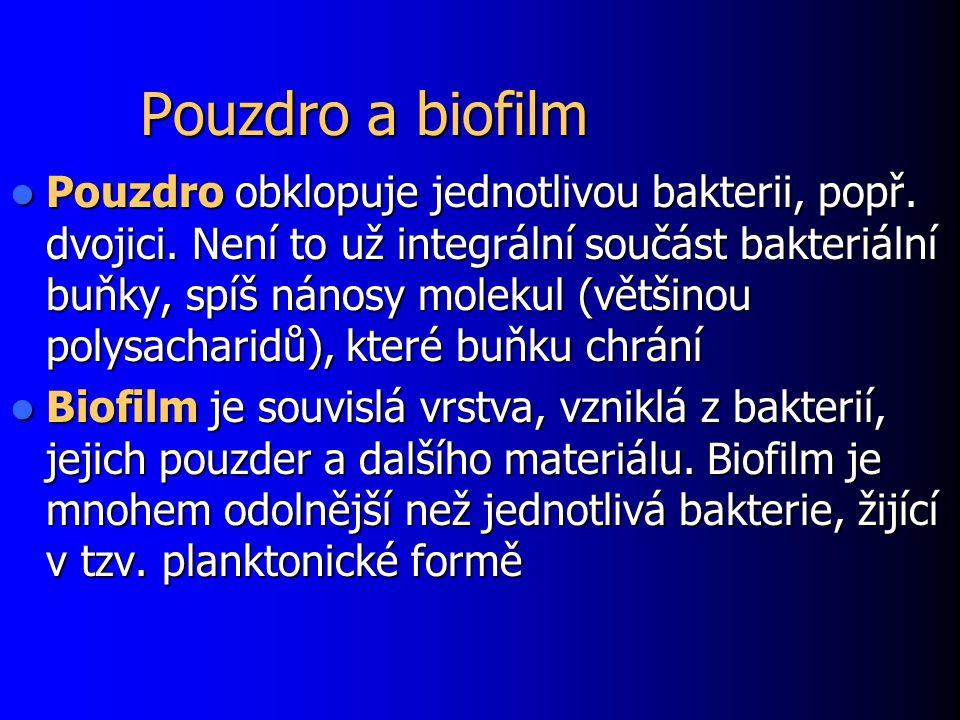 Pouzdro a biofilm