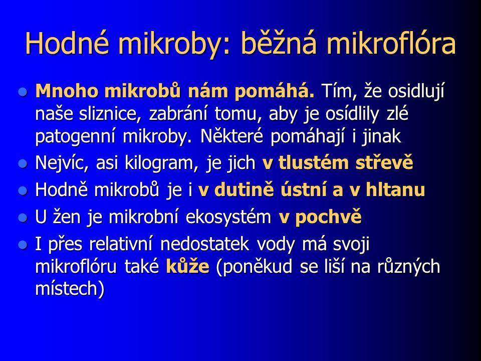 Hodné mikroby: běžná mikroflóra
