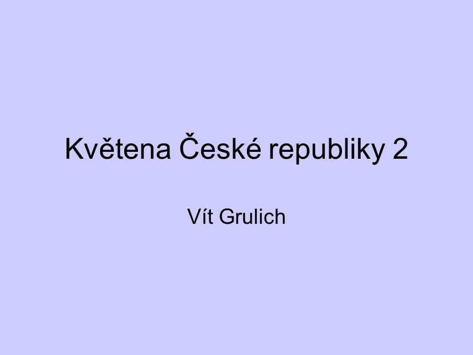 Květena České republiky 2
