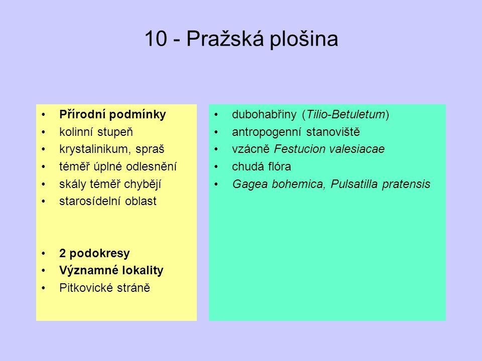 10 - Pražská plošina Přírodní podmínky kolinní stupeň