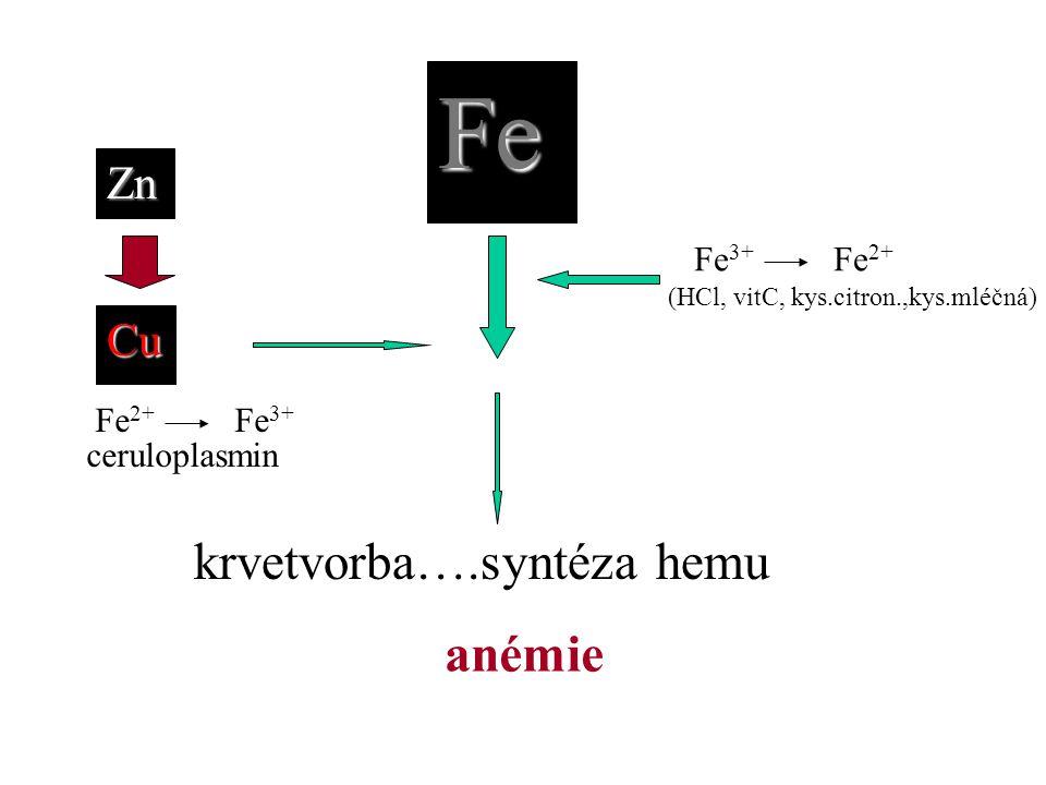Fe krvetvorba….syntéza hemu anémie Zn Cu Fe3+ Fe2+ ceruloplasmin Fe2+