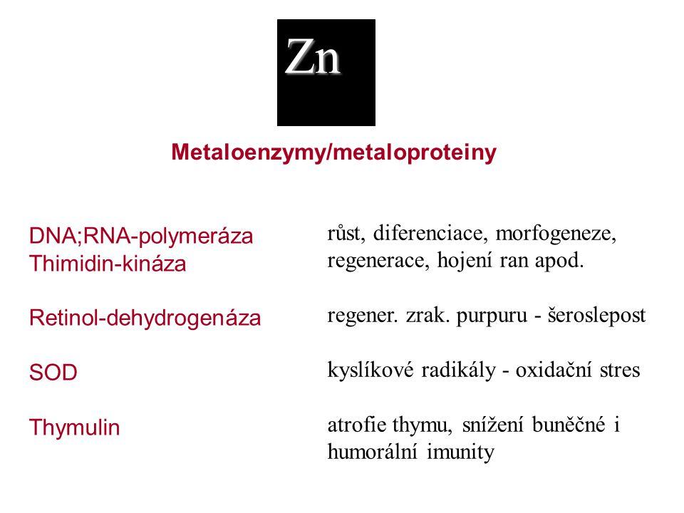 Zn Metaloenzymy/metaloproteiny růst, diferenciace, morfogeneze,