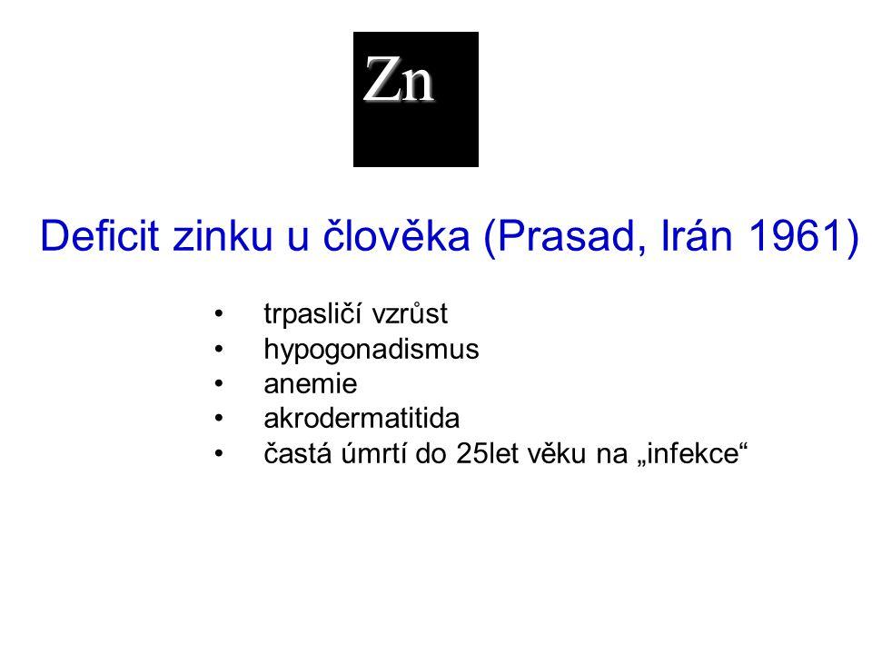 Zn Deficit zinku u člověka (Prasad, Irán 1961) trpasličí vzrůst