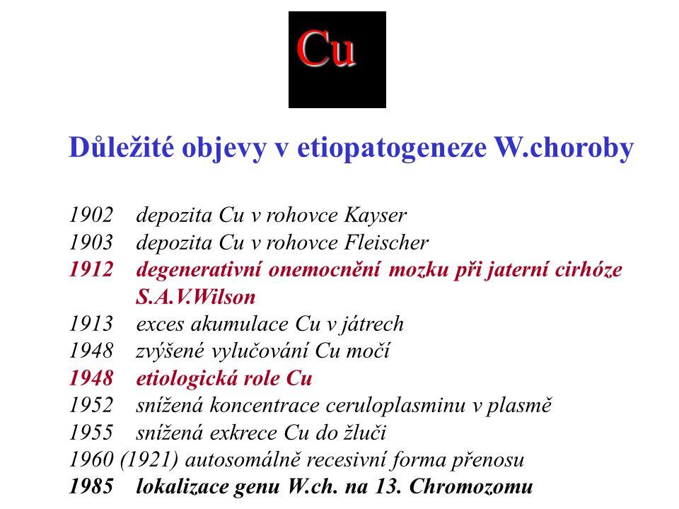 Cu Důležité objevy v etiopatogeneze W.choroby