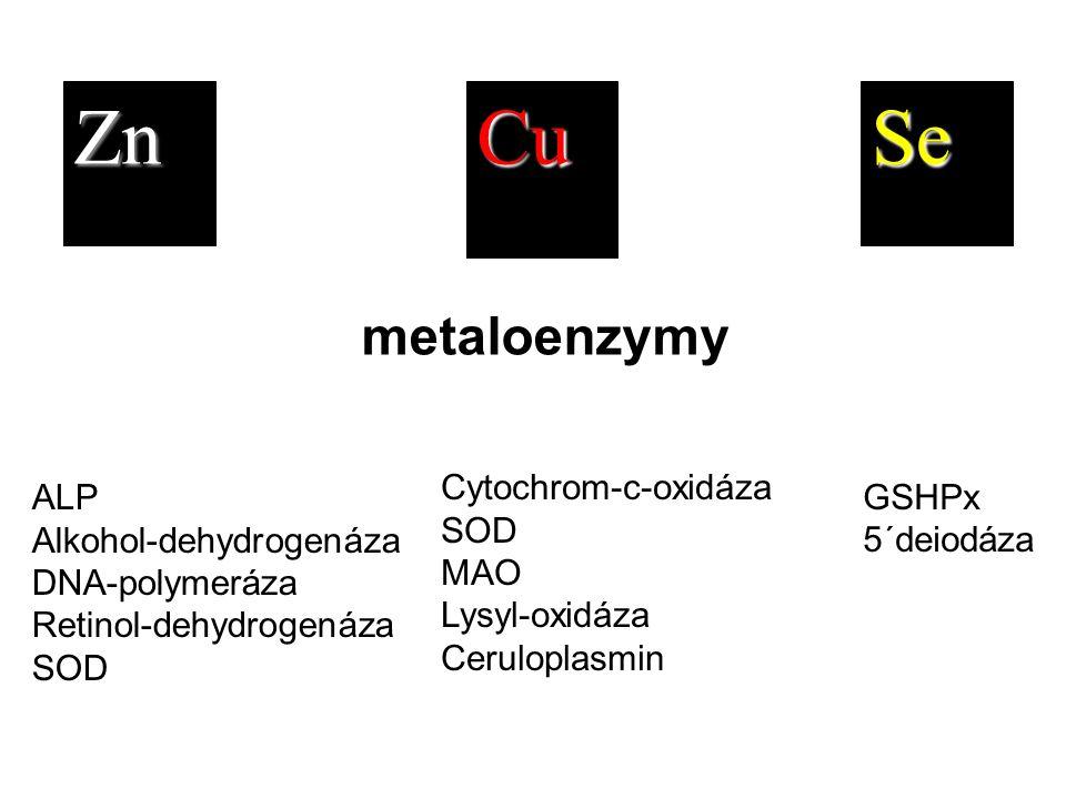Zn Cu Se metaloenzymy Cytochrom-c-oxidáza SOD MAO Lysyl-oxidáza