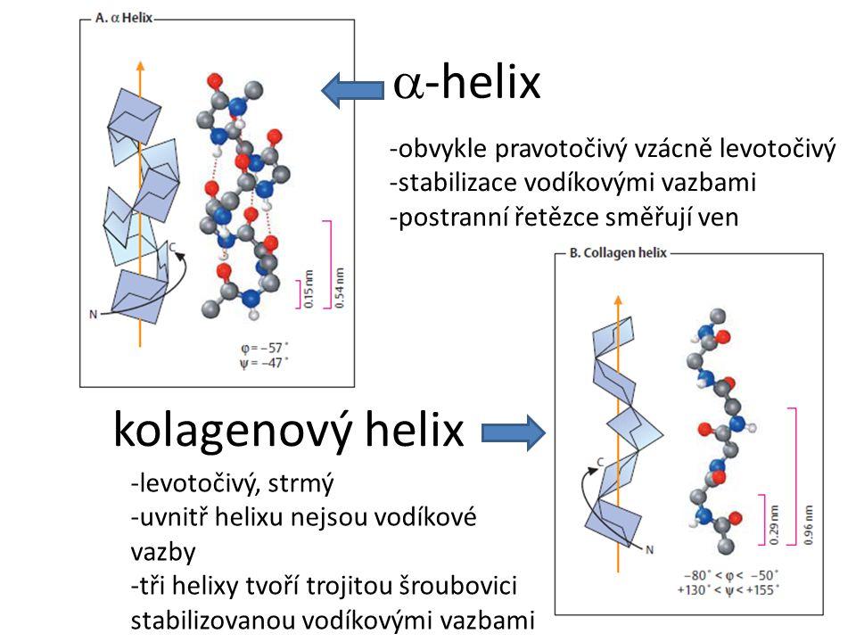 a-helix kolagenový helix -obvykle pravotočivý vzácně levotočivý