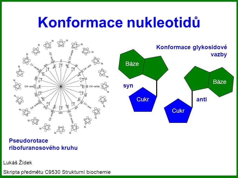 Konformace nukleotidů
