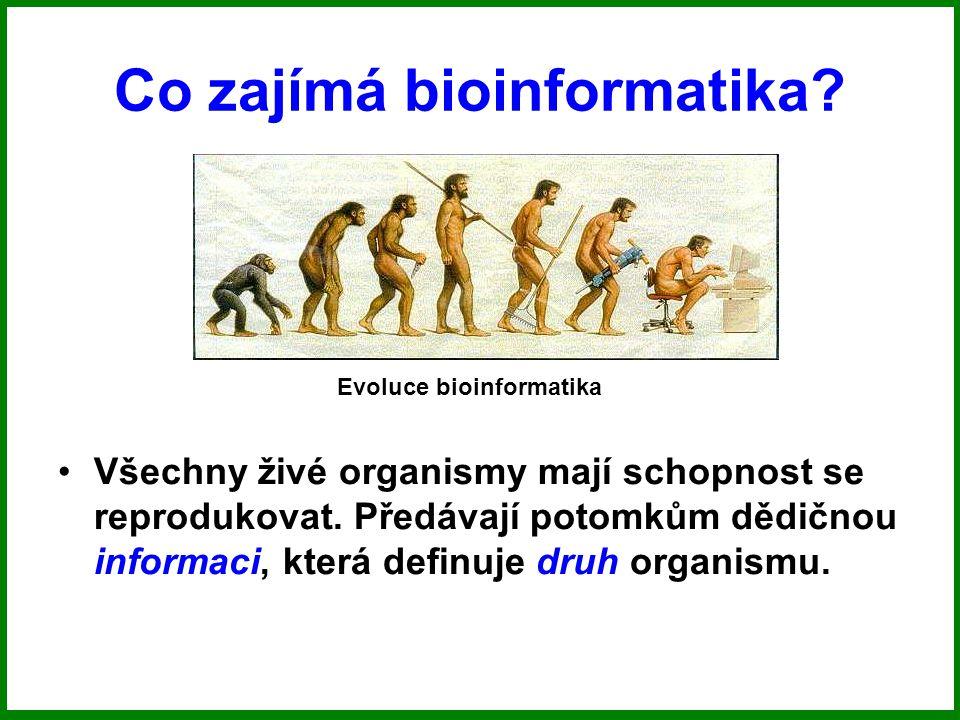 Co zajímá bioinformatika