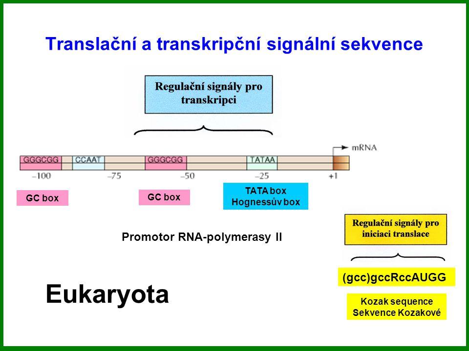 Translační a transkripční signální sekvence