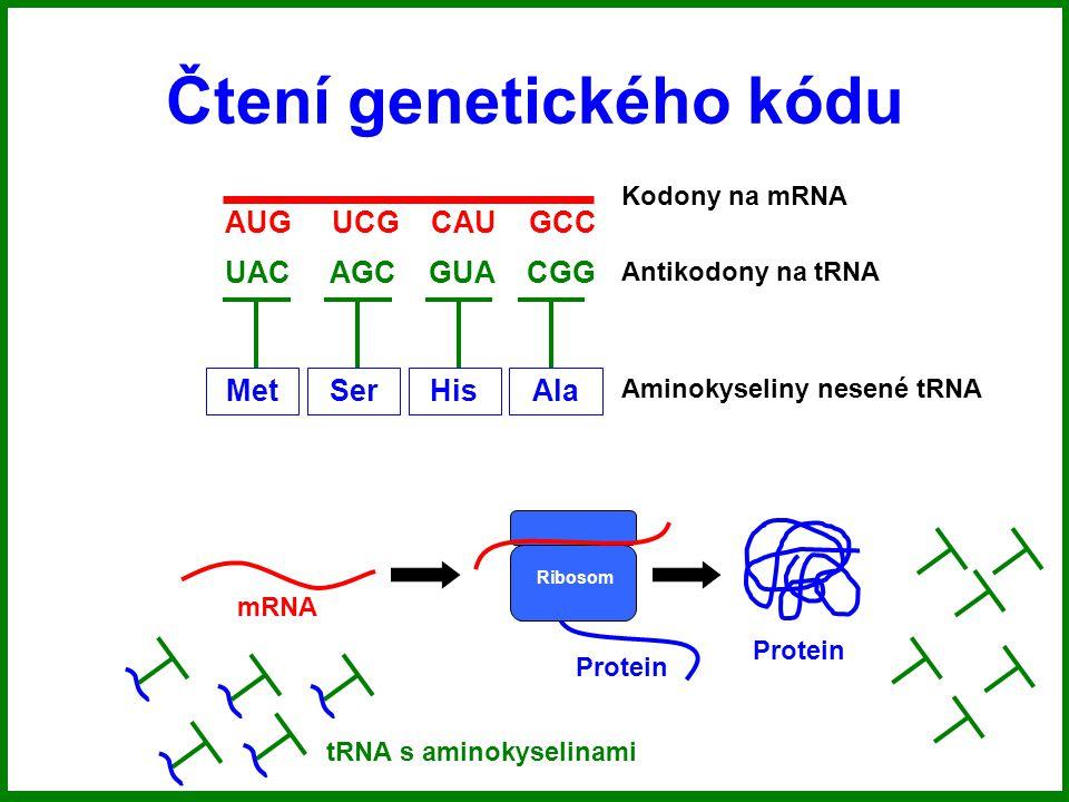 Čtení genetického kódu