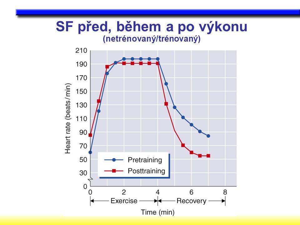 SF před, během a po výkonu (netrénovaný/trénovaný)