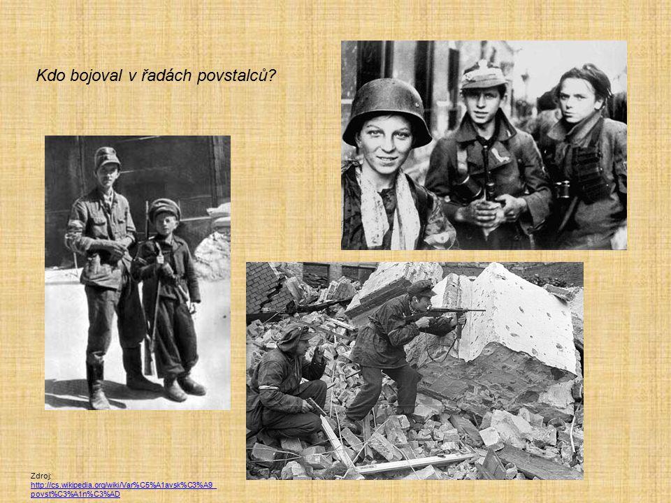 Kdo bojoval v řadách povstalců