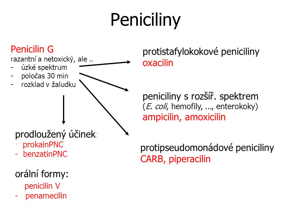 Peniciliny Penicilin G protistafylokokové peniciliny oxacilin