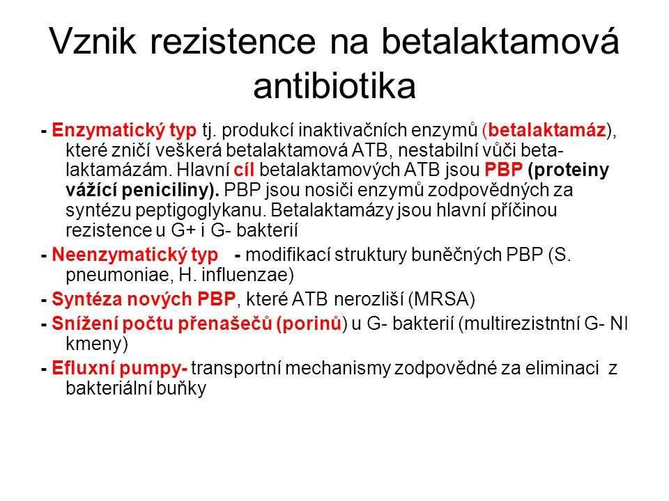 Vznik rezistence na betalaktamová antibiotika
