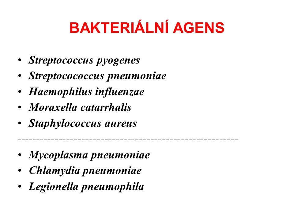 BAKTERIÁLNÍ AGENS Streptococcus pyogenes Streptocococcus pneumoniae