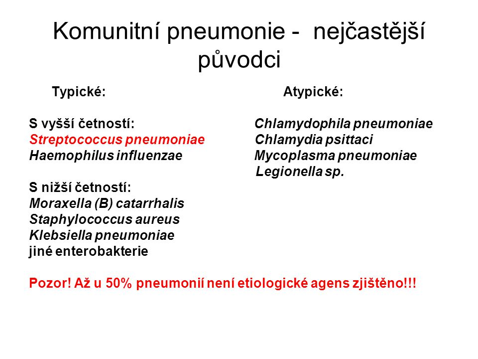 Komunitní pneumonie - nejčastější původci