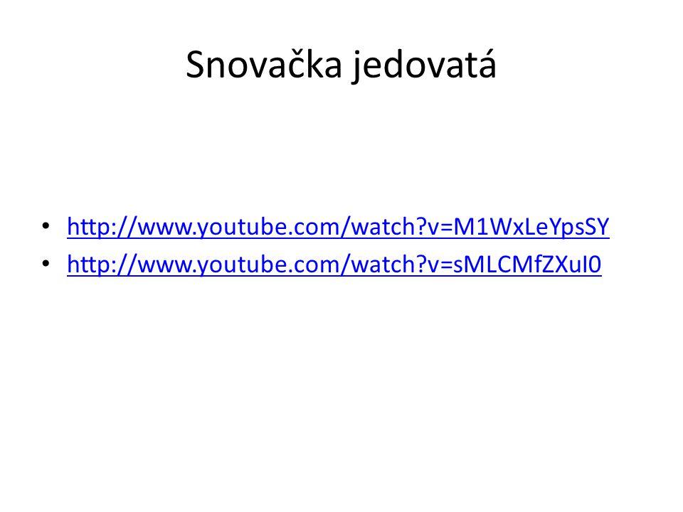 Snovačka jedovatá http://www.youtube.com/watch v=M1WxLeYpsSY
