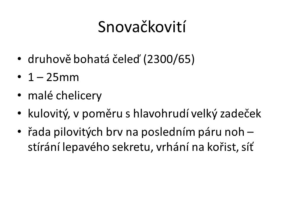 Snovačkovití druhově bohatá čeleď (2300/65) 1 – 25mm malé chelicery