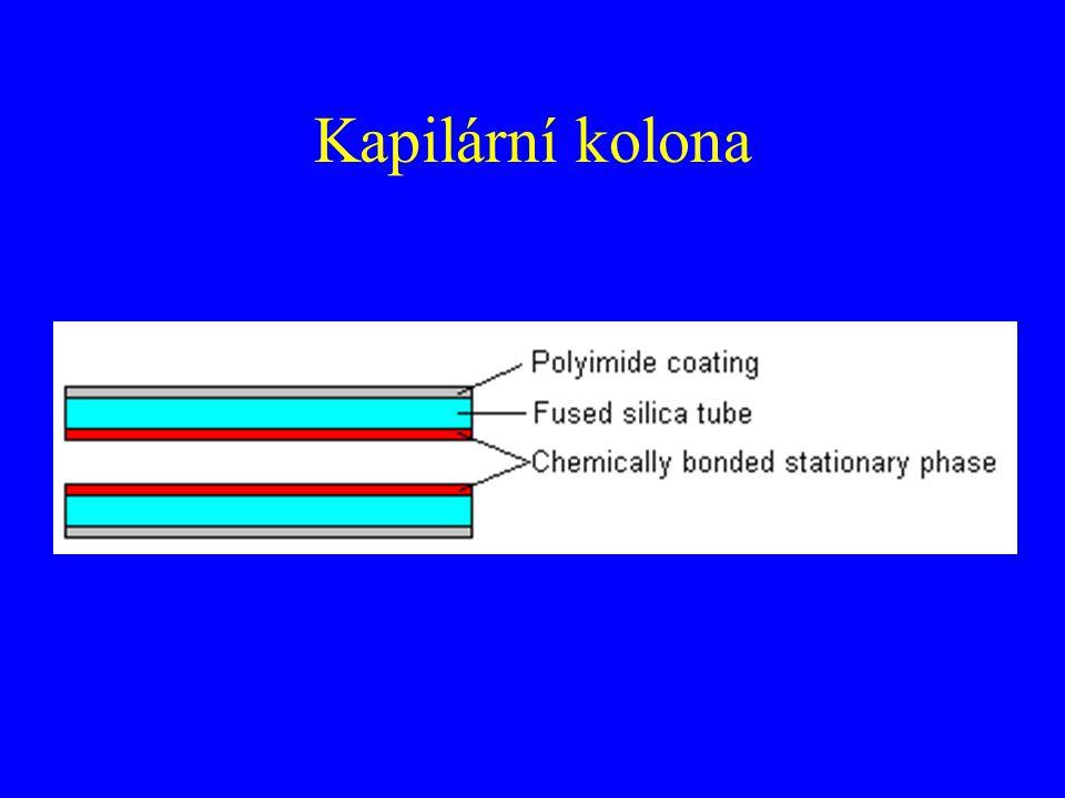 Kapilární kolona