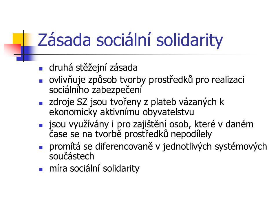 Zásada sociální solidarity