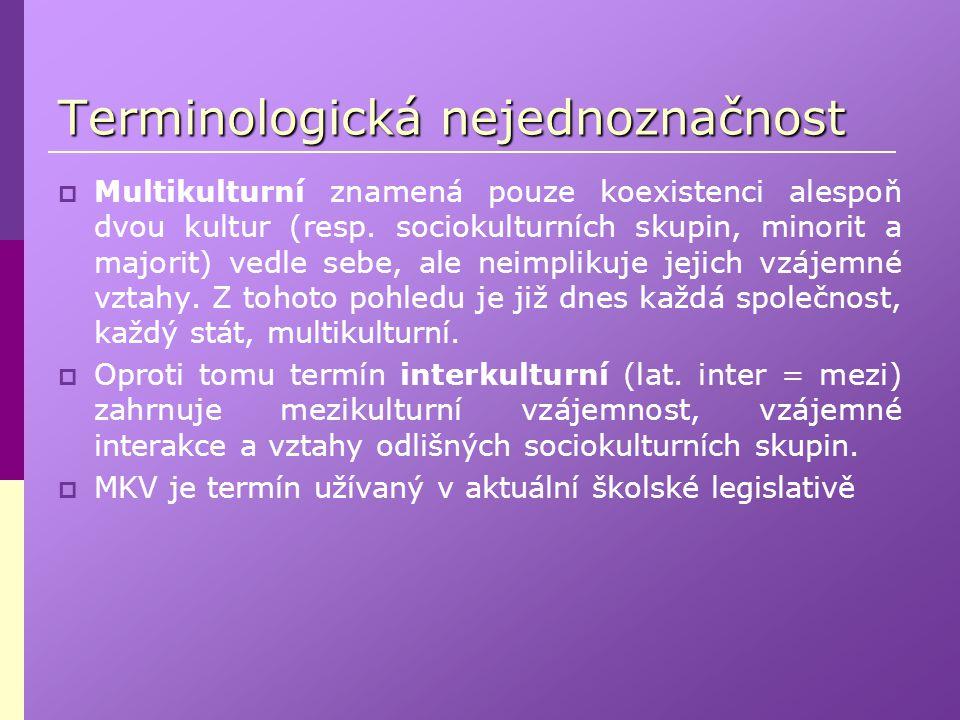 Terminologická nejednoznačnost
