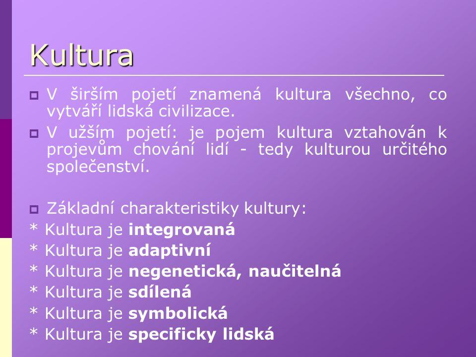 Kultura V širším pojetí znamená kultura všechno, co vytváří lidská civilizace.